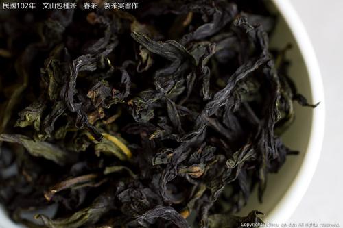 民國102年 文山包種茶 春茶 製茶実習作