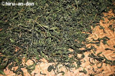 製茶実習で作った文山包種茶