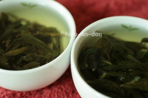 民國98年(2009年)と民國99年(2010年)の文山包種茶 冬茶飲み比べ