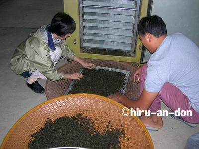 文山包種茶製茶実習 焙煎