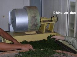 乾燥機の中に茶葉を敷き詰めていきます